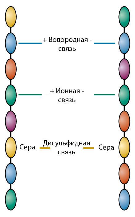 vsya-pravda-o-keratinovom-vypryamlenii-volos-2